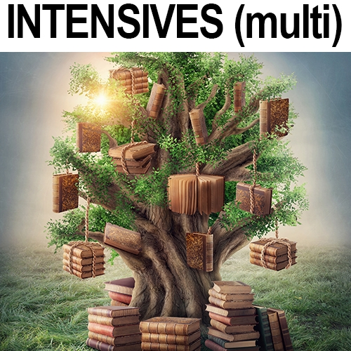 INTENSIVES (Multi Session)
